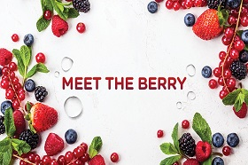 [Lobby Lounge] Meet the Berry